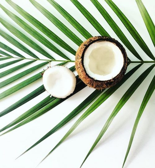"Spoons_2 ❀ on Instagram_ ""I've got 99 problems and coconut solves around 82 of them!! Coconut meat, coconut water, coconut oil, coconut milk_ What's there not to…"""